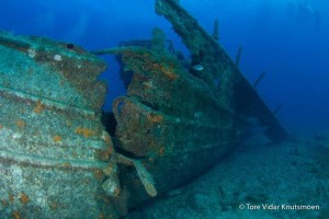 Mogan Wrecks