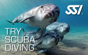 SSI - Try Scuba Diving